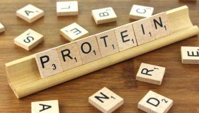 8 Zeichen für einen Proteinmangel