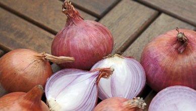 10 fabelhafte Vorteile von Zwiebeln