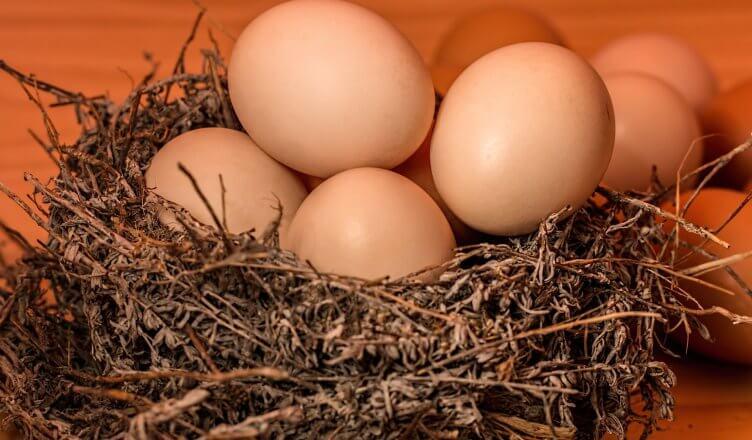 8 Gründe, warum Eier doch gesund sind