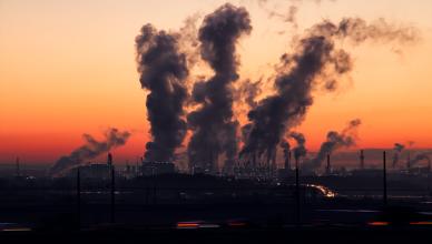 Warum Umweltschadstoffe unsere Gehirne verändern