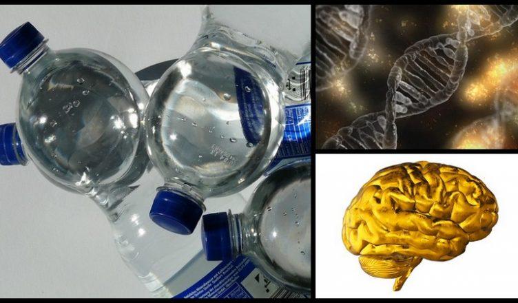 10 wichtige Dinge, die man über BPA wissen sollte