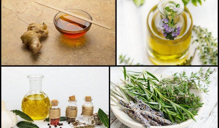 5 natürliche Hausmittel aus schleimlösenden Pflanzen
