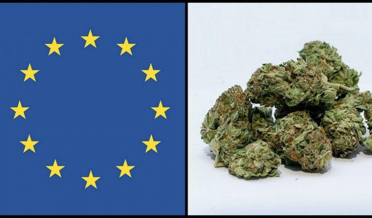 Das Problem mit dem von der Regierung bereitgestellten Cannabis