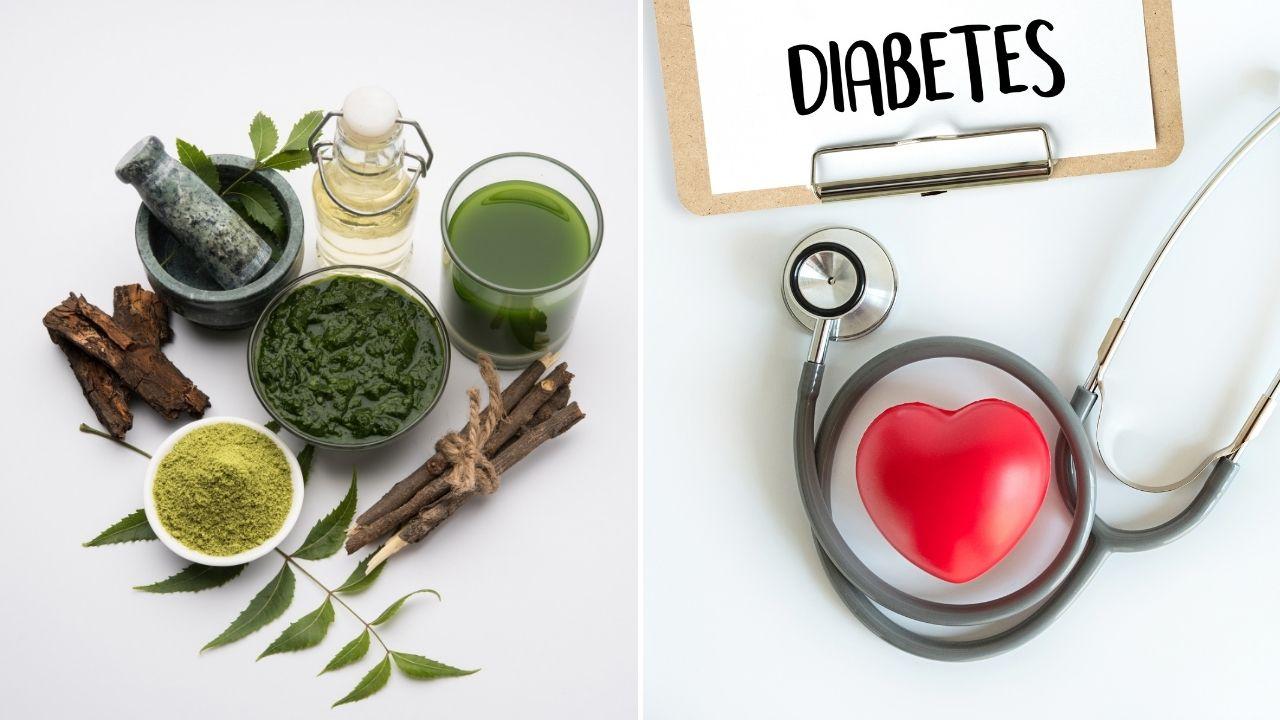 "Neem gegen Diabetes: Wie das ""Wunderkraut"" helfen kann"