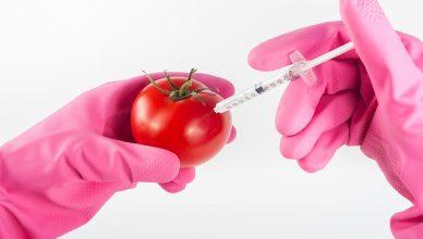 Genetisch veränderte Lebensmittel: Warum du sie vermeiden solltest