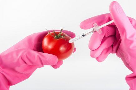 Genetisch veränderte Lebensmittel
