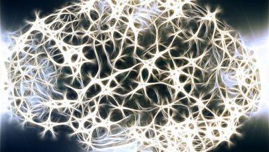 Schadstoffe können den ALS-Verlauf