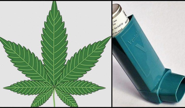 Cannabis gegen Asthma: Nützlich oder schädlich?