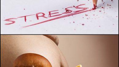 Die Rolle von psychologischem Stress und emotionalem Essen bei Fettleibigkeit