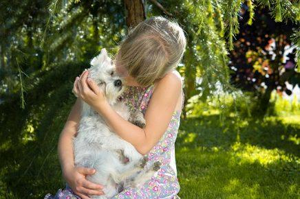 Mit Tieren aufzuwachsen, macht uns im Alter widerstandsfähiger