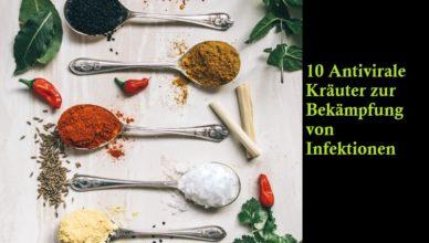 10 Antivirale Kräuter zur Bekämpfung von Infektionen