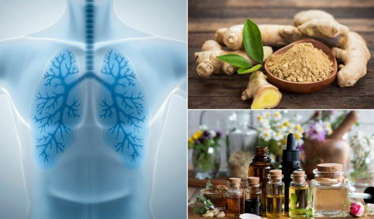 Lungenreinigung: Natürliche Wege zur Entgiftung der Lunge